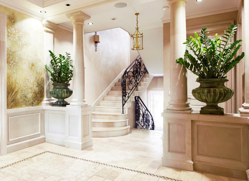 Комнатные растения в интерьере: что выбирают дизайнеры