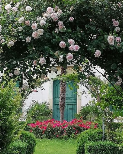 11 идей для сада, которые мы подсмотрели в Италии